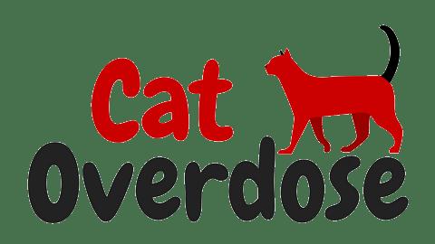 Cat Overdose